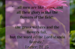 %22the grass withers and the flowers fade,-4